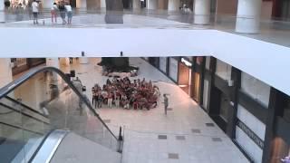 Массовые танцы в  ТЦ Арена сити. Репетиция