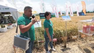 DLG -  Bulgaria - BASF
