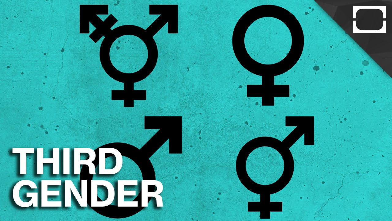 third gender In the 1990s, questions of sex roles and individual identity have taken a central position in intellectual debates these eleven essays in history and anthropology.