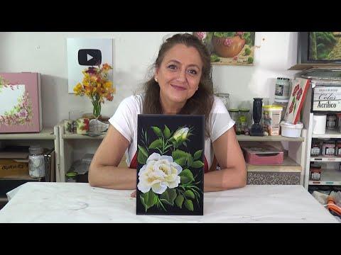 """APRENDA A COMPRAR E SELECIONAR GADO DE CORTE - CURSO GRATUITO """"NOÇÕES MORFOLÓGICAS."""" from YouTube · Duration:  1 minutes 40 seconds"""