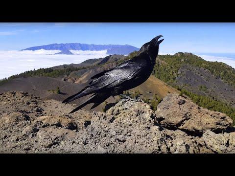 La Palma - Cumbre Vieja