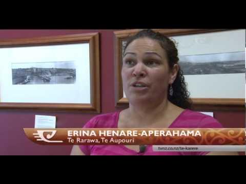 Public consultation sought on 'Te Ika a Maui'