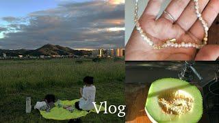 Vlog) 여름과 가을 사이 :: 피크닉 가기, 에어프…