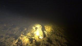 Підводне полювання на Вычегда. Пошук миня. 2018.