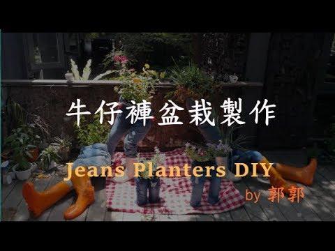 牛仔褲盆栽製作 / Jeans Planter DIY