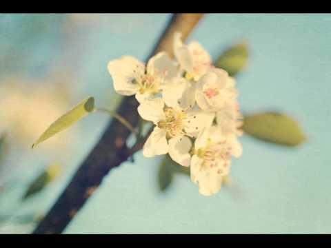 'Erdal Güney - Bıçak Sırtı Enstrümantal Müzik'