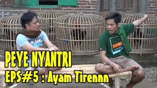 "Video PEYE (PERCIL YUDHA) NYANTRI EPSODE 5 ""AYAM TIREN"" download MP3, 3GP, MP4, WEBM, AVI, FLV Oktober 2018"