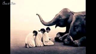 Fábulas Hindúes - El Elefante y los 6 Ciegos
