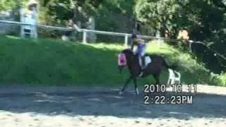 2010年10月11日(月・祝)に「赤城競馬場」(赤城乗馬クラブ)で行われ...