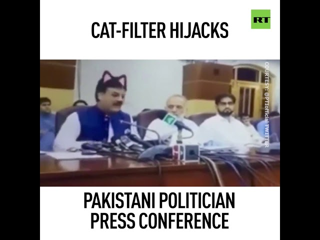 Puss conference: Pakistani politicians give media address with Facebook cat filter enabled