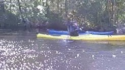 Kayaking on Lofton Creek with Up The Creek Xpeditions
