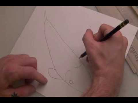 How To Draw A Koi Fish. A Beginners Guide.
