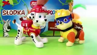 Psi Patrol & Jajka Niespodzianki Fun Eggs     Bajki I Unboxing