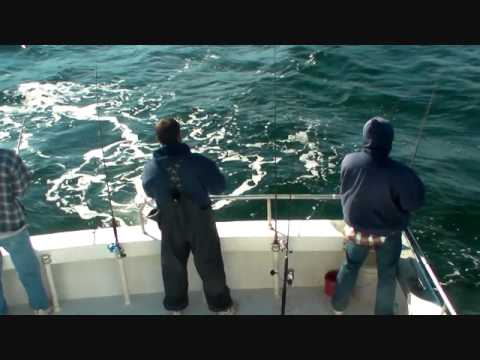 Angler head boat ocean city md deep sea fishing 11 1 10 for Ocean city deep sea fishing