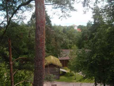 NORWAY (korpiklaani - with trees)