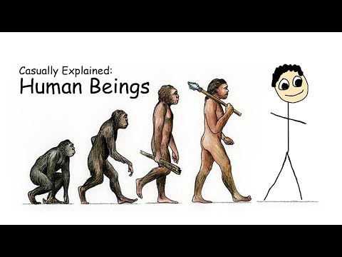 Casually Explained: Human Beings