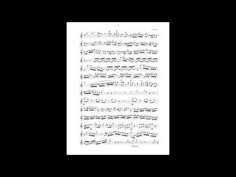 Mozart Oboe Concerto in C Major - I. Allergro aperto (piano accompaniment)