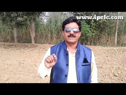 Rodent Control | Pest Control | Mouse | Mice Control | Termite Control | Indian Pest Control