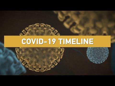 covid-19-timeline:-how-and-when-did-the-virus-spillover-to-humans?