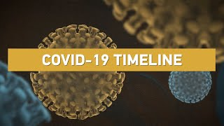 COVID-19 Timeline: How and when did the virus spillover to humans?