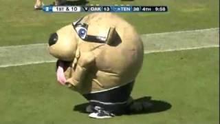 NFL Mascot Eats Hot Cheerleader - Titan Mascot T-Rac