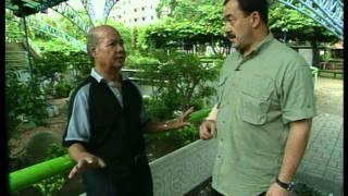 В поисках приключений  Тайланд часть 2