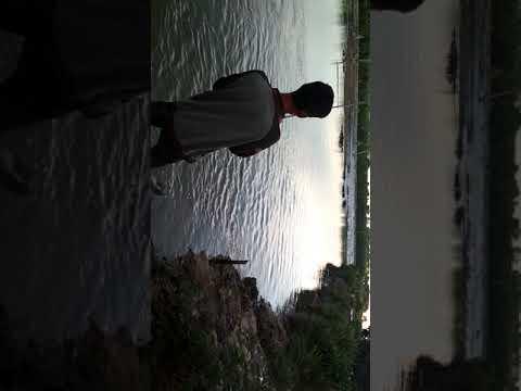Casting dapet ikan bandeng besar
