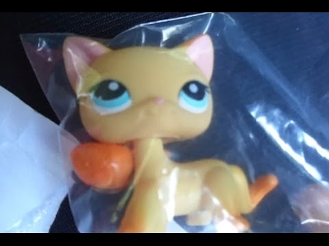 LPS: I Got Brooke Hayes From LPS Popular!!! :D