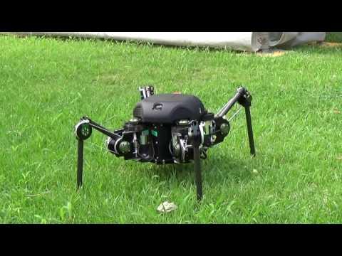 TITAN-XIII : Sprawling-type Quadruped Robot