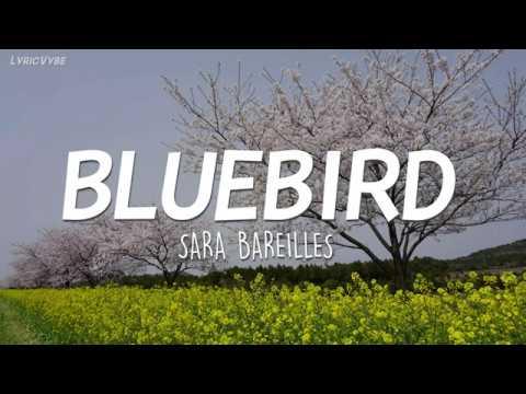 Sara Bareilles - Bluebird (Lyrics)