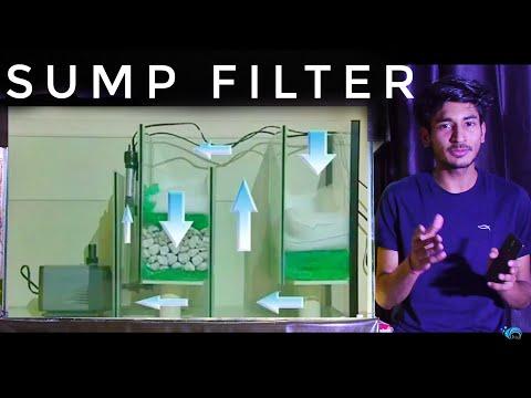 HOW Sump Filter Works  In Aquarium : Sump Filter Process And Use In Aquarium : FULL Guide On Sump