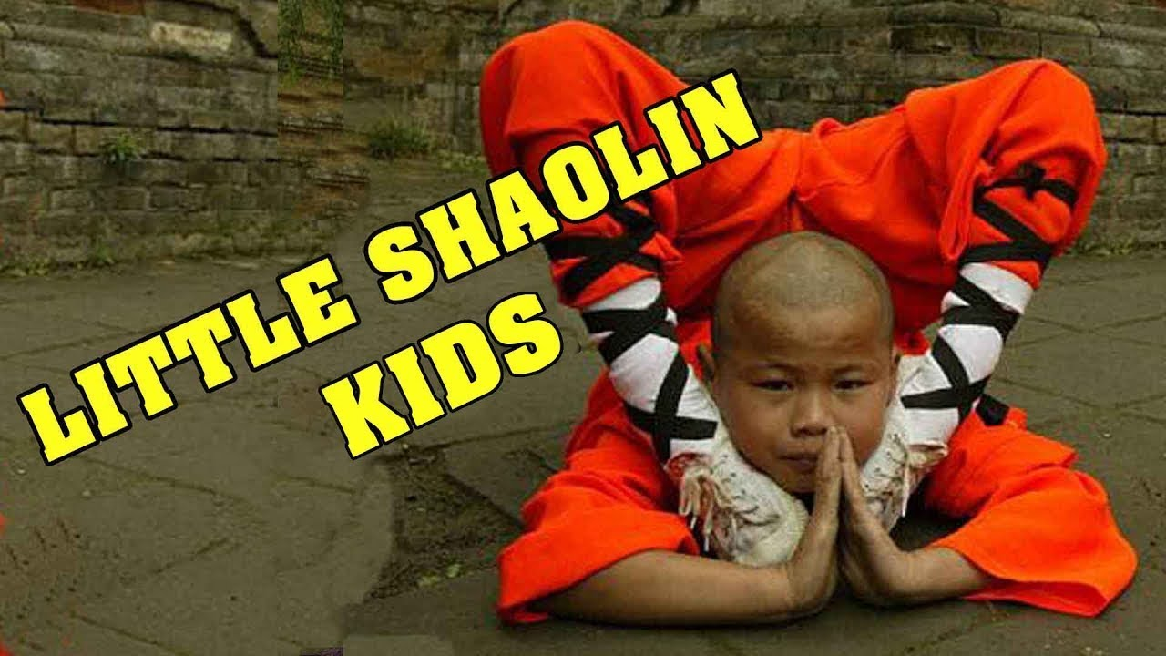 Download Wu Tang Collection - Little Shaolin Kids