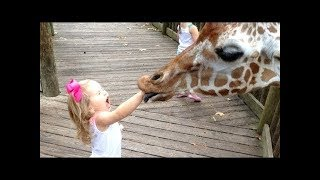 FORGET CATS! Funny KIDS vs ZOO ANIMALS are WAY FUNNIER! – TRY NOT TO LAUGH / FuNNy ViDeos