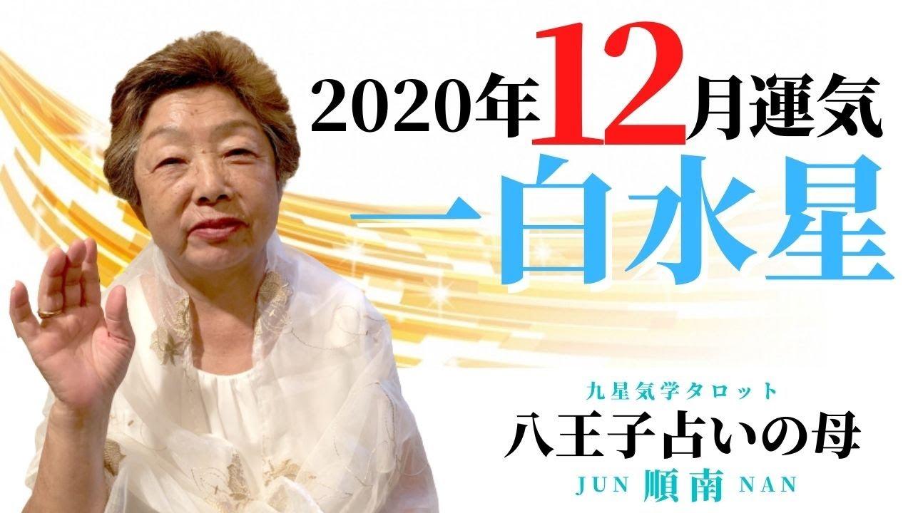星 2020 白水 一