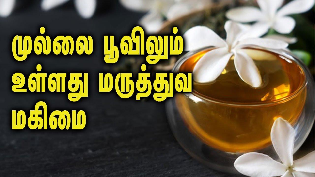 Unbelievable healthy benefits in jasmine flower unbelievable healthy benefits in jasmine flower izmirmasajfo