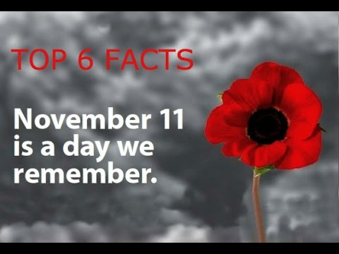 Top 6 remembrance day facts youtube top 6 remembrance day facts mightylinksfo