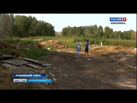 Жители села Прокудское в Коченевском районе жалуются на залитый навозом лес