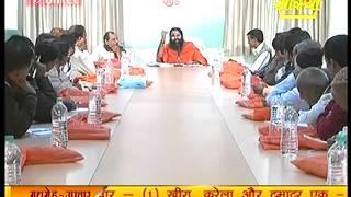 Yogrishi Swami Ramdev -Patanjali Yogpeeth Haridwar Part 2