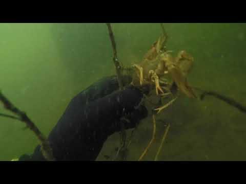 Поиск камер GoPro | Итог - нашли затонувший КОРАБЛЬ в центре Москвы! ЖЕСТЬ!