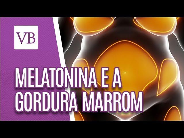 Melatonina e a gordura marrom - Você Bonita (26/02/19)
