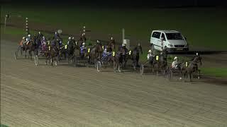 Vidéo de la course PMU WOLVEGA'S WINTERMIJL