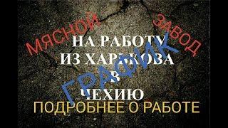 видео Виза в Чехию в Новороссийске