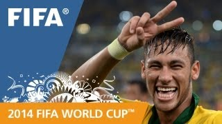The 2014 FIFA World Cup is coming!