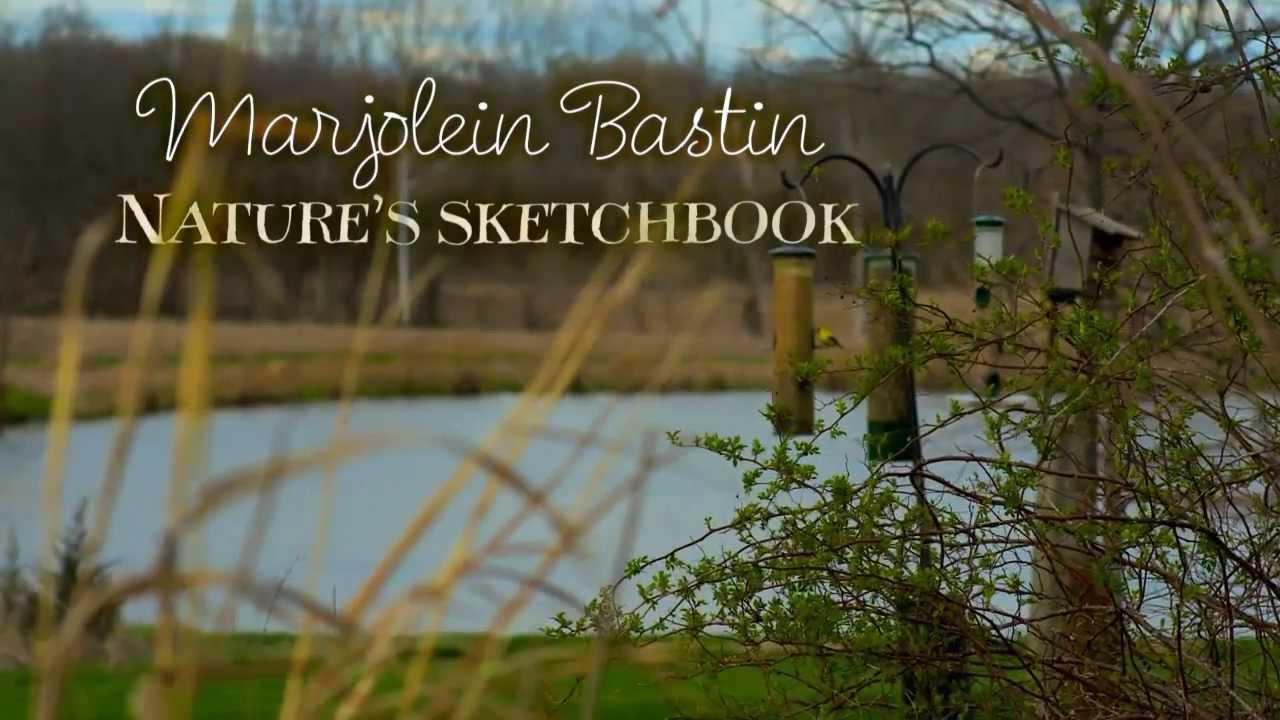 Natures Sketchbook Marjolein Bastin