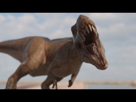 VR 360 Stereoscopic Video 4K, T-Rex Dinosaur, Google Cardboard