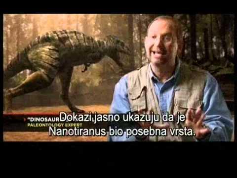 Dinosaur T-Rex vs nanotyranus