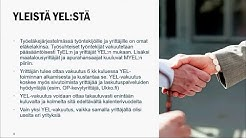 YEL vakuuttaminen ja sen valvonta, tietoa tilitoimistoille 2019 - Ilmarinen