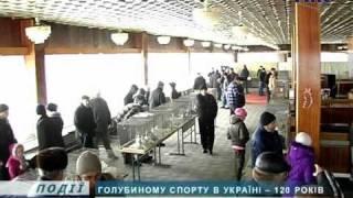 Голубиному спорту в Україні - 120 років