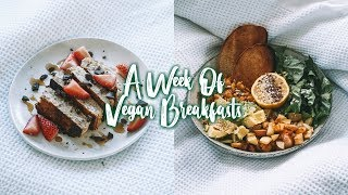 ANOTHER WEEK OF VEGAN BREAKFASTS | Easy & Delicious Recipes