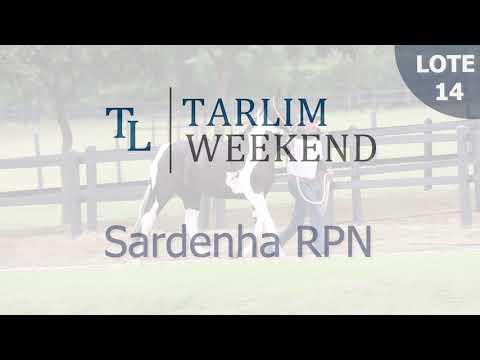Lote 14 - Sardenha RPN (6º Leilão Tarlim)